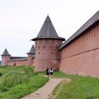 Суздаль, Спасо - Ефимьевский монастырь. :: Сергей Пиголкин
