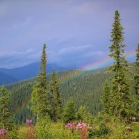 В горах опять идут дожди :: Сергей Чиняев