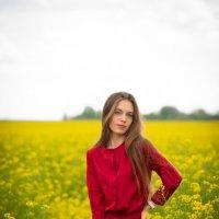 Red and yellow :: Владислав Гаврик