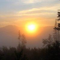 В мареве утреннего тумана :: Сергей Чиняев