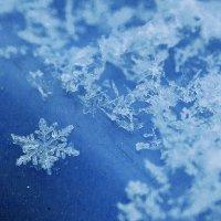 Снежинка :: Виктор Фельдшеров
