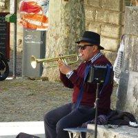 Уличный музыкант :: Лидия Бусурина