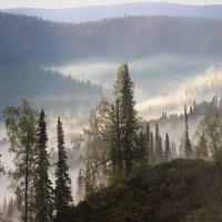 Ползёт по распадку туман :: Сергей Чиняев