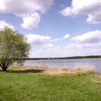 озеро Белое, Колин Бор, Самарская область :: Валерий