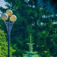 парк имени 1 Мая. Курск :: Руслан Васьков