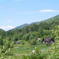 в лесах :: Игорь Ушаков