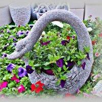 Лебедь в цветочном. :: Валерия Комова
