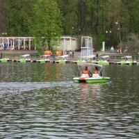 В парке у пруда :: Natalia Harries
