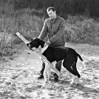 Большая собака :: Liudmila LLF