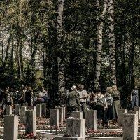 9 мая. мемориальное кладбище. :: Юлия Денискина
