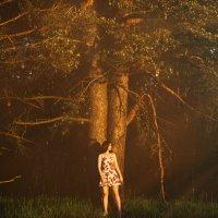 На краю леса :: Max Flynt
