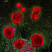 Стоп-сигнал :: Фотогруппа Весна - Вера, Саша, Натан