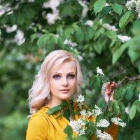 Нежность весны :: Ангелина Хасанова
