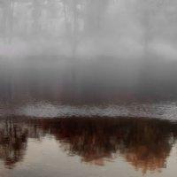 Туман. :: Сергей Iv
