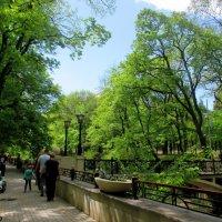 Кисловодск. В курортном парке... :: Нина Бутко