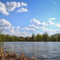 Весна на реке :: Алексей (GraAl)