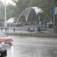 весенний дождь :: Евгений Гузов
