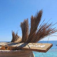 Пляж, Египет :: Елена Шаламова