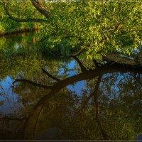 Вечер на реке :: Андрей Дворников