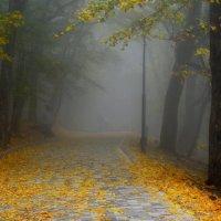 Туманный терренкур.... :: Юрий Цыплятников