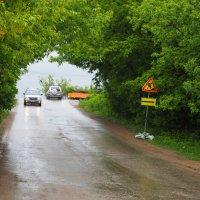 После дождя. :: Ильсияр Шакирова