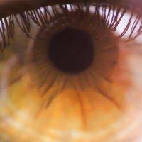 Макро фотография очень красивых женских глаз :: Artem