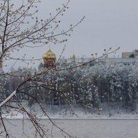 Свежесть :: Владилен Панченко