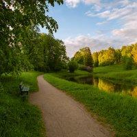 Майским вечером в парке. :: Олег Бабурин