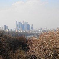 Виды Москвы с Воробьевых гор :: Маргарита Батырева