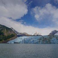 У ледника Спегаццини :: Владимир Жданов