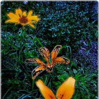 Цветочное ассорти :: Нина Корешкова