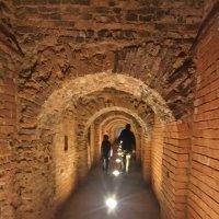 Петропавловская крепость :: Любовь Dan
