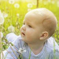 Милое дитя и одуванчики :: Екатерина Богучар