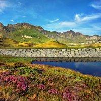 август в горах :: Elena Wymann