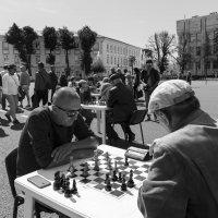 Чёрные или белые? :: Maxim Semenov
