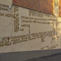 На заборе написано ... :: Светлана Мельник