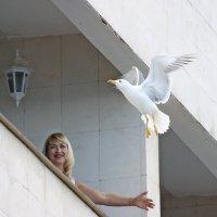 Птица счастья выбери меня! :: Леонид leo