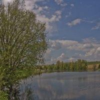 Гладь озера :: Ольга Винницкая (Olenka)