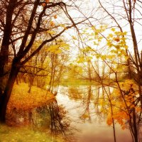 Краски Болдинской осени... :: Андрей Головкин