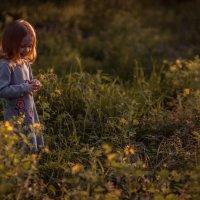 Любимый закат :: Евгений MWL Photo