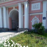Вход в Крестовоздвиженский, Казачий собор. (Петербург). :: Светлана Калмыкова