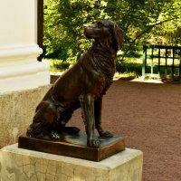 Скульптура ждущей собаки :: Кирилл