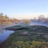 Утренний туман. :: Люба