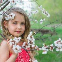 Весенний портрет :: Екатерина Богучар