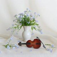 Цветочная мелодия :: Людмила