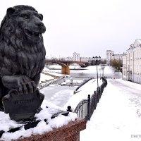 Лев, Витьба и Двина :: Дмитрий Печенкин