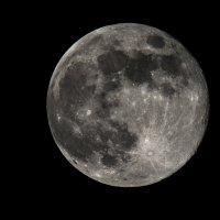 Луна :: Олег Савин
