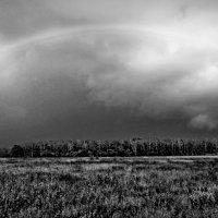 Rainbow :: Александр Липецкий