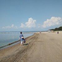 Летний пейзаж. (Финский залив). :: Светлана Калмыкова