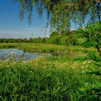 Летний пейзаж :: Владимир Ефимов